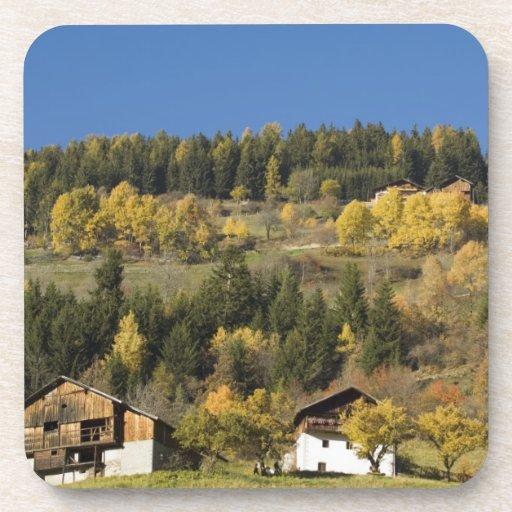 Italia, Trentino - alto provincia del Adigio, Bolz Posavasos De Bebida