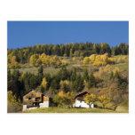 Italia, Trentino - alto provincia del Adigio, Bolz Postal