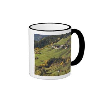 Italia, Trentino - alto provincia del Adigio, Taza De Dos Colores