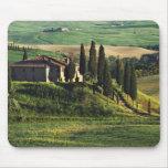Italia. Un chalet pastoral de Toscana en Val d'Orc Alfombrillas De Ratón