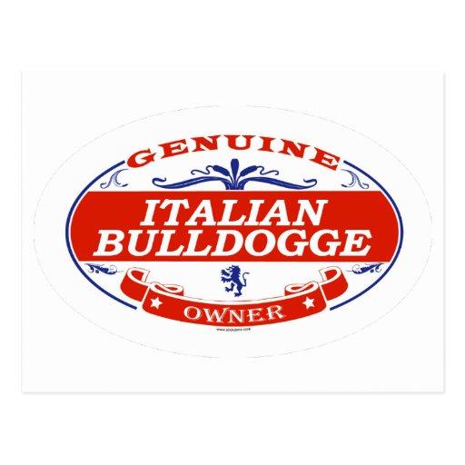 Italian Bulldogge  Postcard