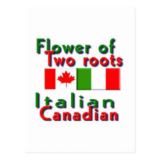 Italian-Canadian Postcard