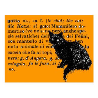 Italian Dictionary cat Postcard