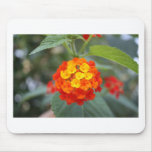Italian flowers mouse pads