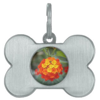 Italian flowers pet name tag