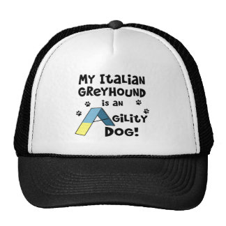 Italian Greyhound Agility Dog Mesh Hat