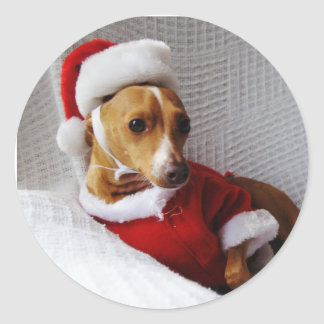 Italian Greyhound Christmas Sticker