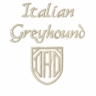 Italian Greyhound Dad Polo