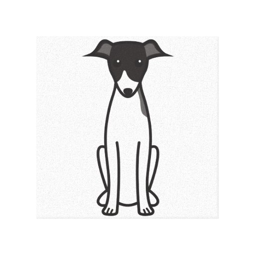 Italian Greyhound Dog Cartoon Canvas Print