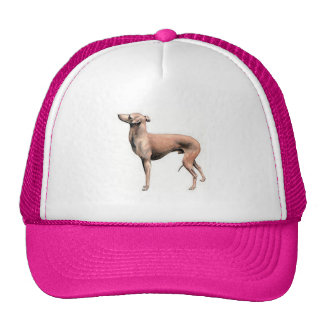 Italian Greyhound Mesh Hats