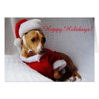 Italian Greyhound Holiday Greeting Card