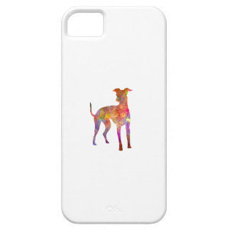 Italian Greyhound in watercolor iPhone SE/5/5s Case