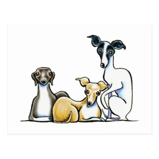 Italian Greyhound Trio Postcard