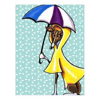 Italian Greyhound Umbrella Crazy Postcard