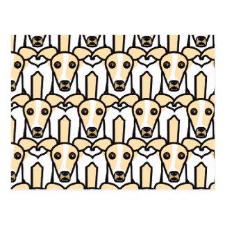 Italian Greyhounds Postcard