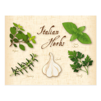Italian Herbs, Basil, Oregano, Parsley, Garlic Postcard