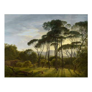 Italian Landscape Umbrella Pines by Hendrik Voogd Postcard