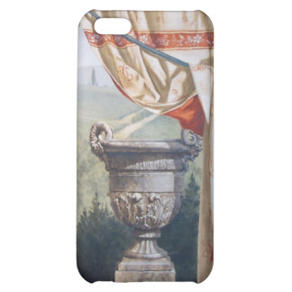 Italian landscape with urn case for iPhone 5C