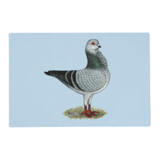 Italian Owl Grizzle Pigeon Placemat