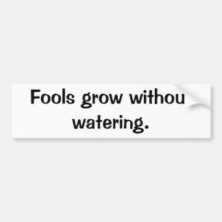 Italian Proverb No.38 Bumper Sticker