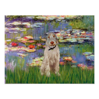 Italian Spinone 12 - Lilies 2 Poster