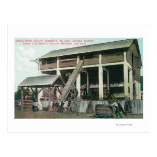 Italian-Swiss Colony Brandy Distillery Postcard