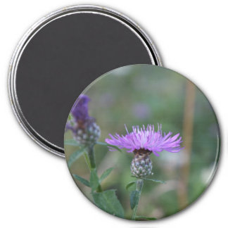 Italian Thistle 3 Inch Round Magnet