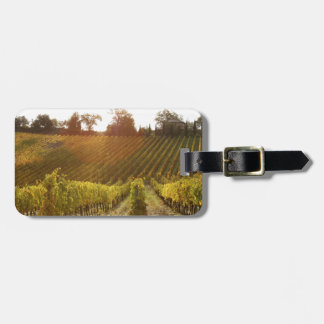 Italian vineyard in Tuscany Travel Bag Tag