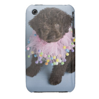 Italian Water Dog (Lagotto) Puppy iPhone 3 Case-Mate Cases