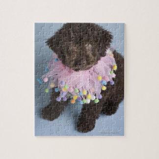 Italian Water Dog (Lagotto) Puppy Jigsaw Puzzle