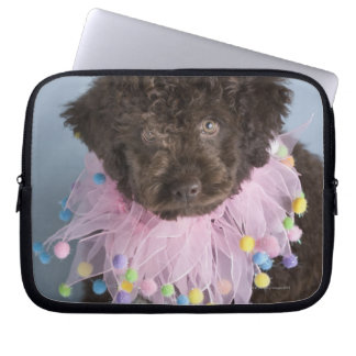 Italian Water Dog (Lagotto) Puppy Laptop Computer Sleeves