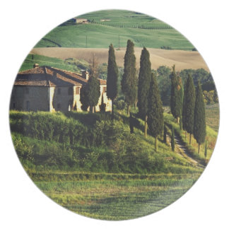 Italy. A pastoral Tuscany villa in Val d'Orcia. Dinner Plate