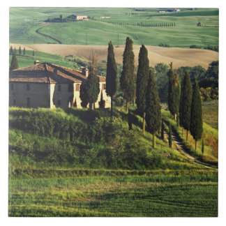 Italy. A pastoral Tuscany villa in Val d'Orcia. Tile