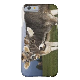 Italy, Alto Adige iPhone 6 Case