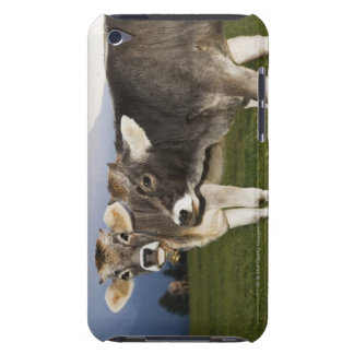 Italy, Alto Adige iPod Touch Case-Mate Case