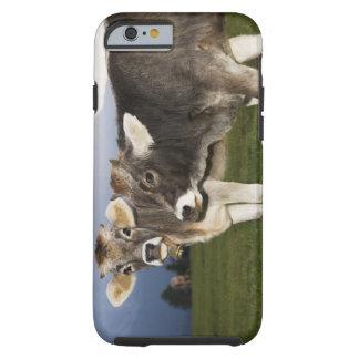 Italy, Alto Adige Tough iPhone 6 Case