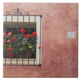 Italy, Asciano, Window Boxes with Fresh Spring Ceramic Tile
