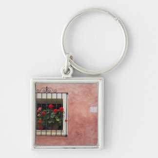 Italy, Asciano, Window Boxes with Fresh Spring Keychain