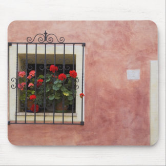 Italy, Asciano, Window Boxes with Fresh Spring Mouse Pad