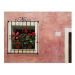 Italy, Asciano, Window Boxes with Fresh Spring Postcard