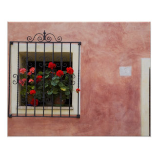 Italy, Asciano, Window Boxes with Fresh Spring Poster