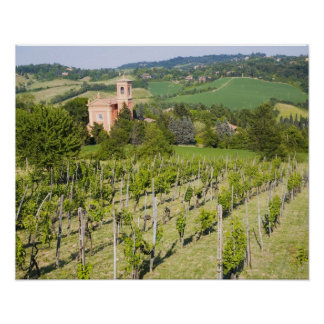 Italy, Bologna, View through Vineyard to Chiesa Poster