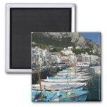 ITALY, Campania, (Bay of Naples), CAPRI: Marina 2 Inch Square Magnet