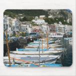 ITALY, Campania, (Bay of Naples), CAPRI: Marina Mouse Pad