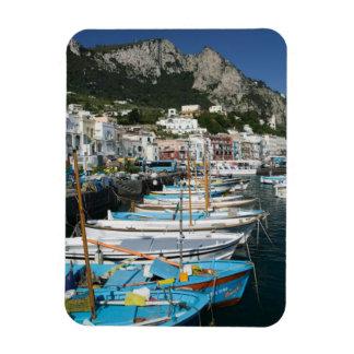 ITALY, Campania, (Bay of Naples), CAPRI: Marina Rectangle Magnet