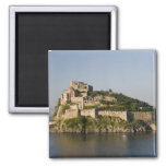 ITALY, Campania, Bay of Naples), ISCHIA, 2 2 Inch Square Magnet