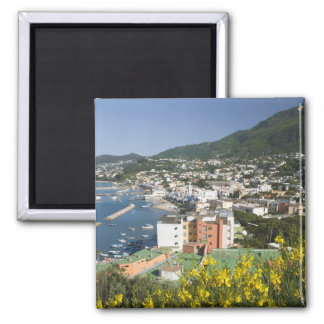 ITALY, Campania, (Bay of Naples), ISCHIA, LACCO 2 Inch Square Magnet