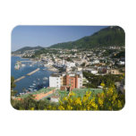 ITALY, Campania, (Bay of Naples), ISCHIA, LACCO Rectangular Magnets