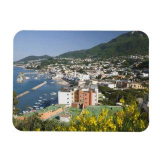 ITALY, Campania, (Bay of Naples), ISCHIA, LACCO Rectangular Photo Magnet