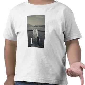 Italy, Como Province, Tremezzo. Lake pier. Shirt